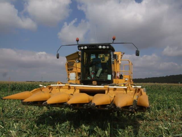 Producción de cultivos hortícolas bajo el criterio de agricultura sostenible