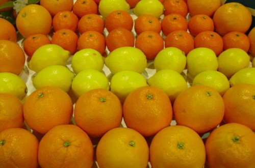 Freshfel predice una producción un 5% menor, que se notará sobre todo en mandarinas