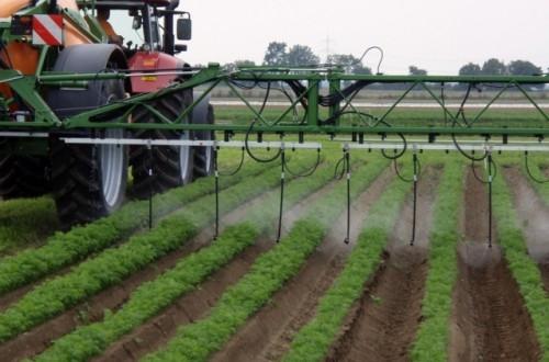 Uso sostenible de productos fitosanitarios, un camino de largo recorrido