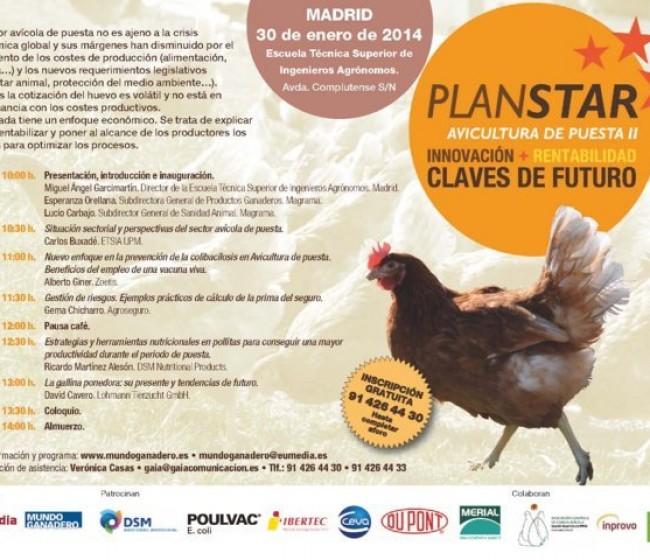 Plan STAR Avicultura de Puesta: claves para remontar un sector dividido