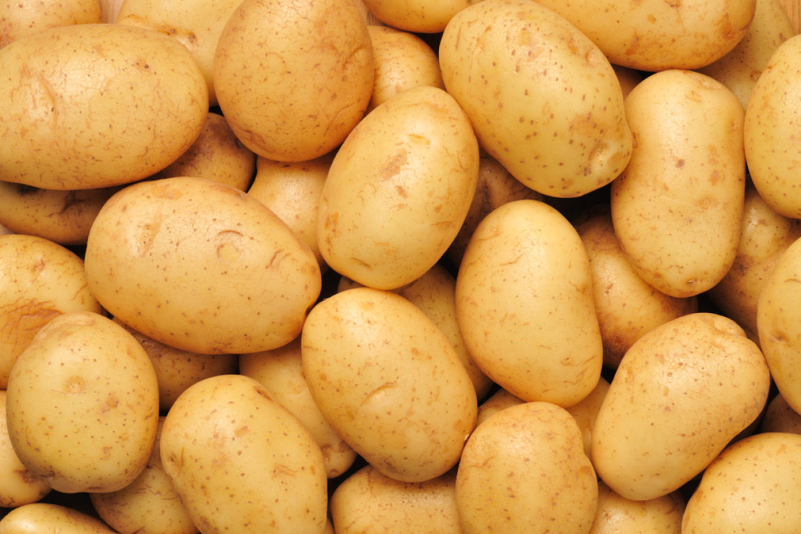 El sector de la patata se cita en El Carpio para hallar la fórmula de la rentabilidad