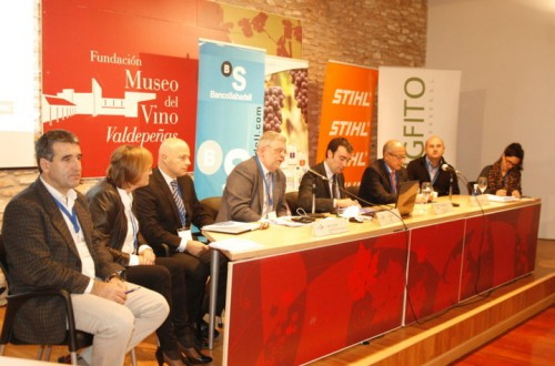 El equilibrio entre la producción de uva y el precio del vino, a debate en el Plan STAR Viña