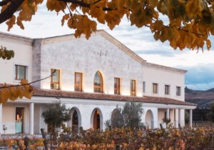 International Wineries for Climate Action incorpora Bodega Emina y Cullen Wines
