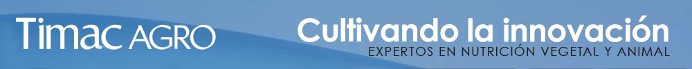 Cultivando Innovacion'19 Skin Sup 11-13/nov