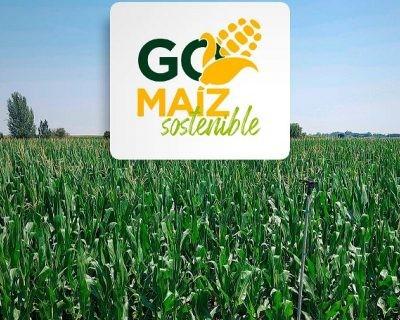 Un proyecto de innovación para mejorar la sostenibilidad, la rentabilidad y la competitividad del maíz español