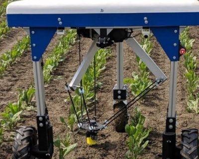 Desarrollan una solución inteligente y sostenible para quitar las malas hierbas