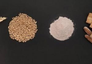 Identifican las 15 variedades de trigo español con mayor potencial