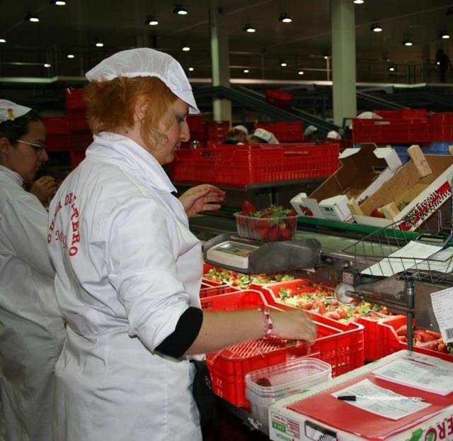 El Senado envía al BOE la Ley que unifica el control de la calidad alimentaria en todo el Estado