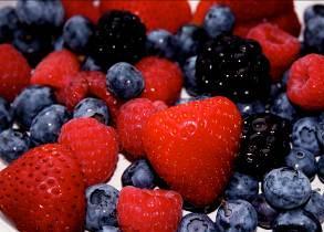 Jornada_Boi_FruitsMuntanya_foto