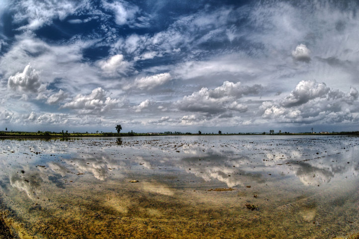 Varios miles de hectáreas de cultivos afectados por el viento y el pedrisco del pasado 18 de julio