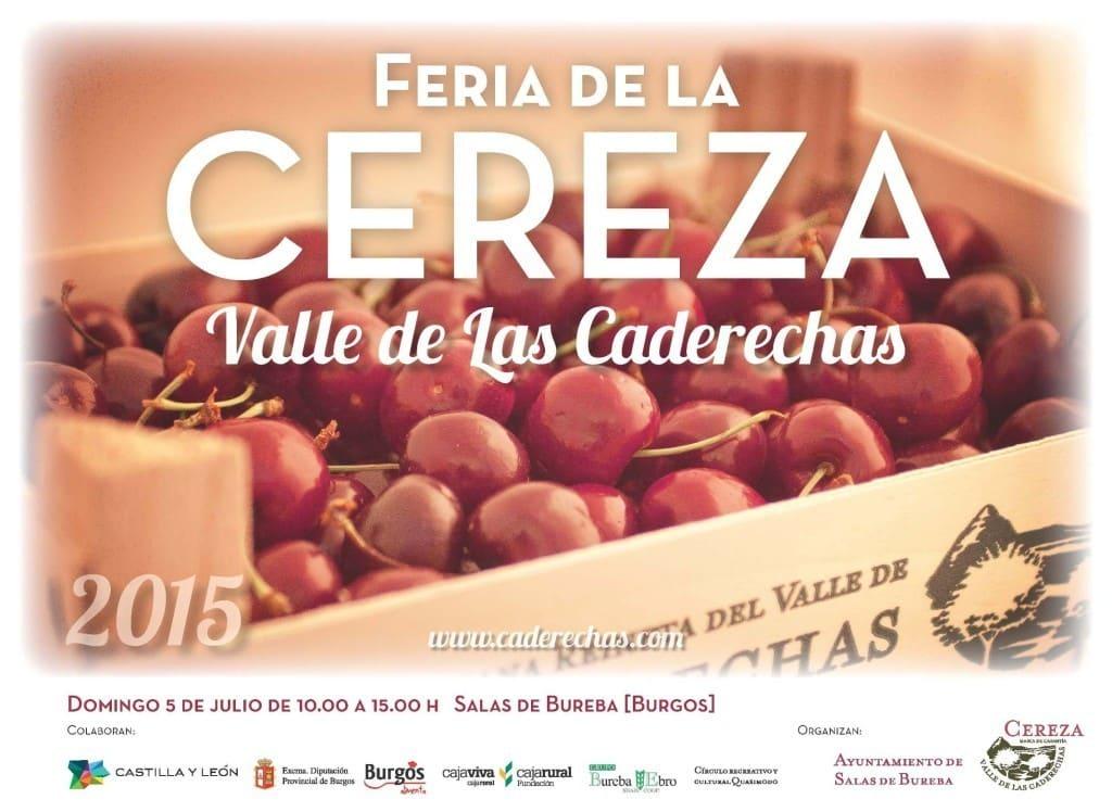 Feria de la Cereza del Valle de las Caderechas 2015