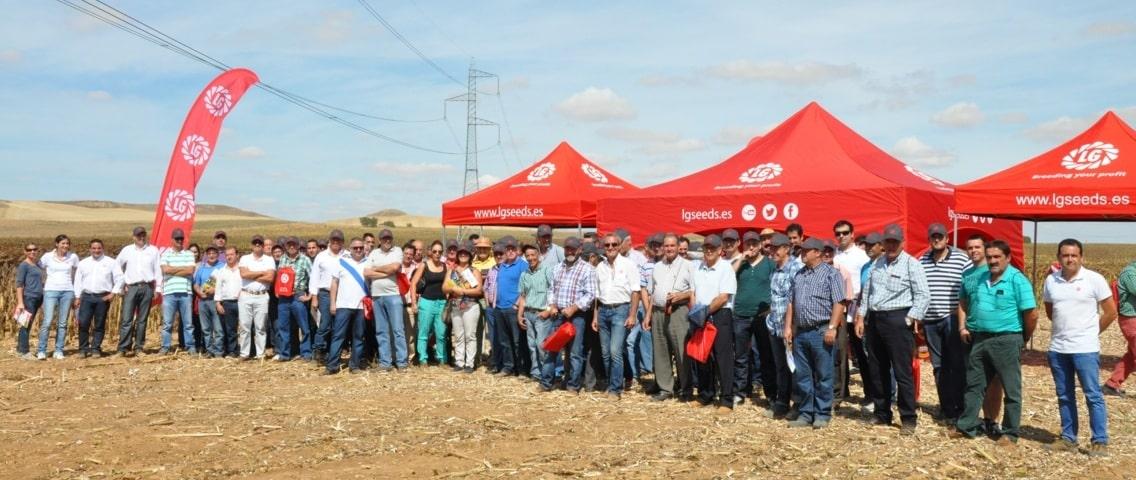Semillas LG presenta su catálogo de girasol en la I Plataforma de Girasol en Castilla y León