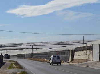 Especial agricultura en Almería