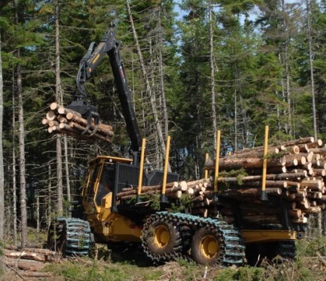 Tractores especiales para el aprovechamiento forestal maderero