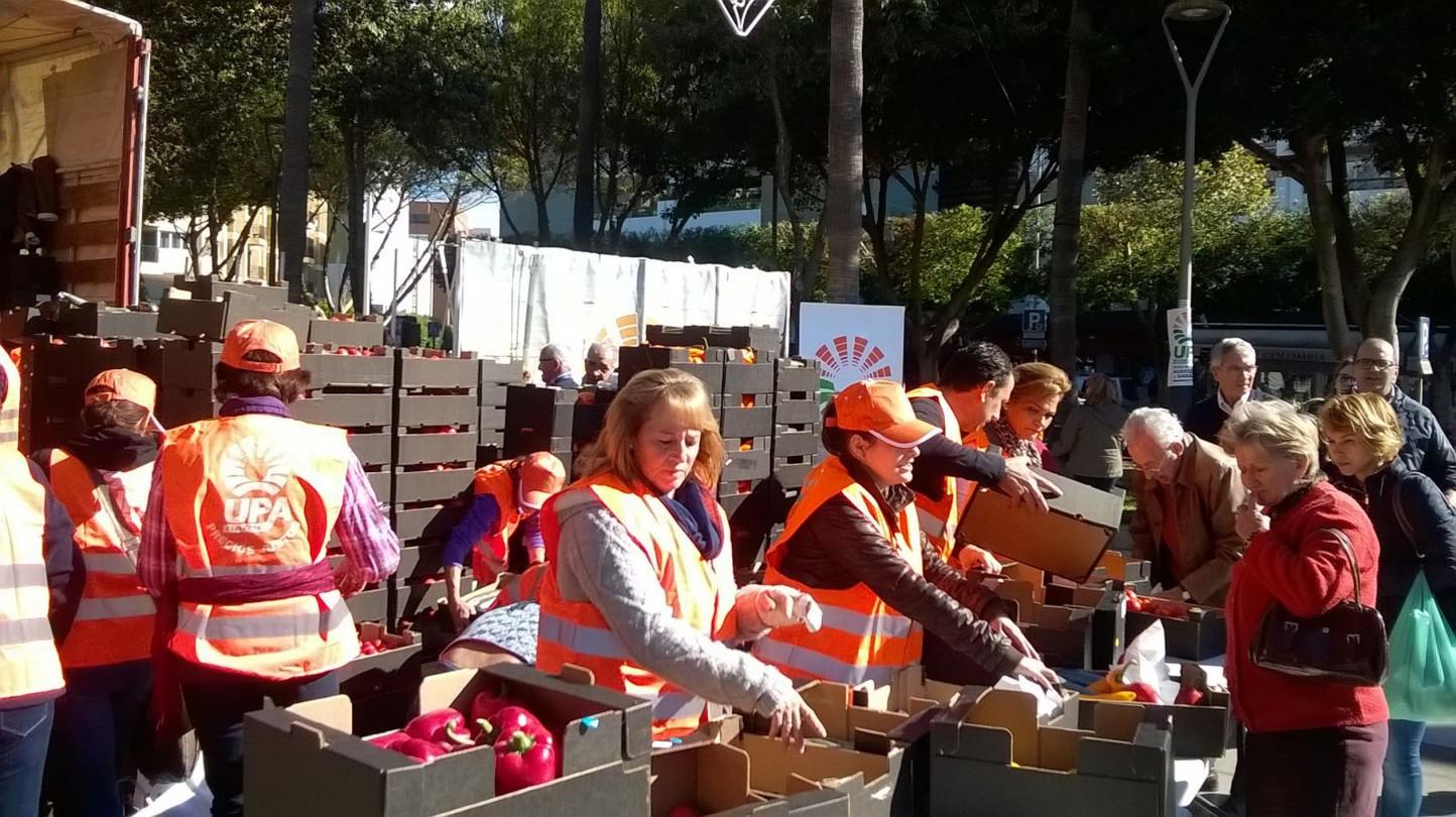 UPA Andalucía reparte 8.500 kilos de hortalizas para exigir precios justos