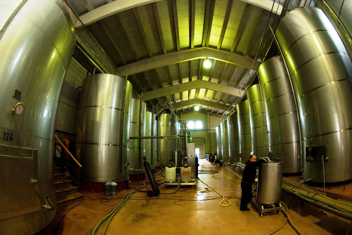 AEMO solicita calma al sector productor ante la acelerada bajada de precios del aceite de oliva