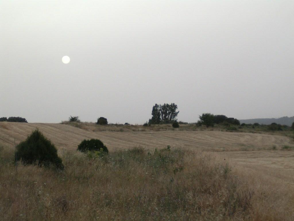 ASAJA insiste a la Junta de Andalucía eliminar el impuesto de Sucesiones y Donaciones en el agro
