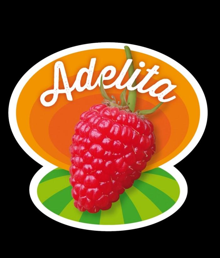 Planasa, presente en Fruit Logistica con su Adelita
