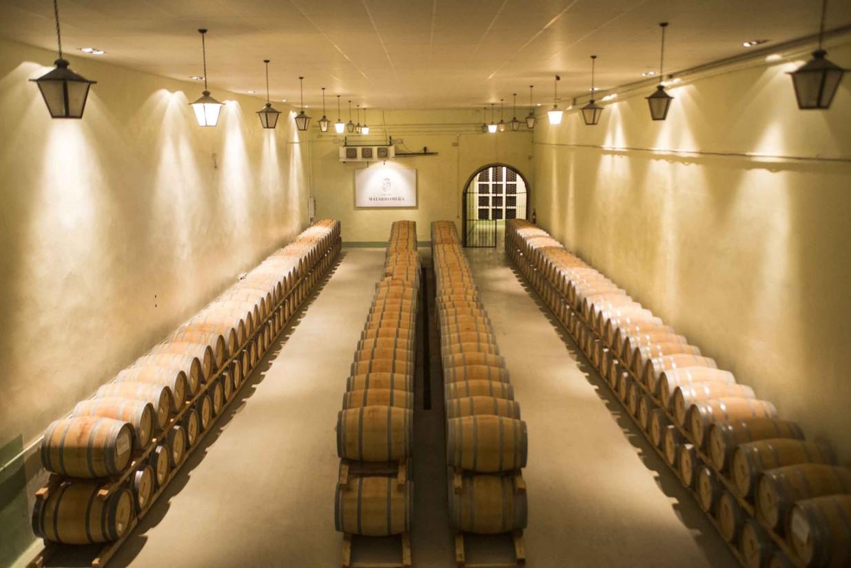 La exportación de vino español bate un nuevo récord en 2015, con 2.638 millones de euros