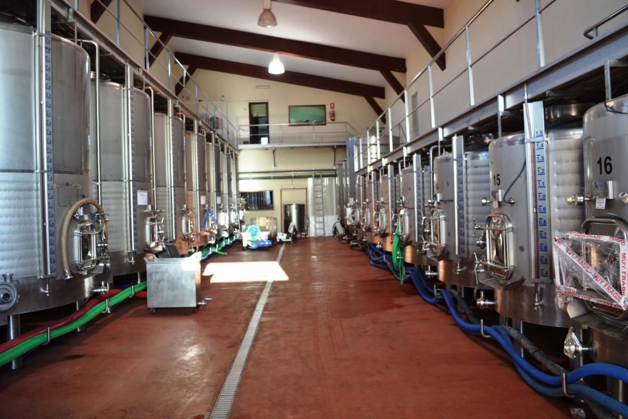 Las principales novedades normativas en el sector vitivinícola, en imágenes