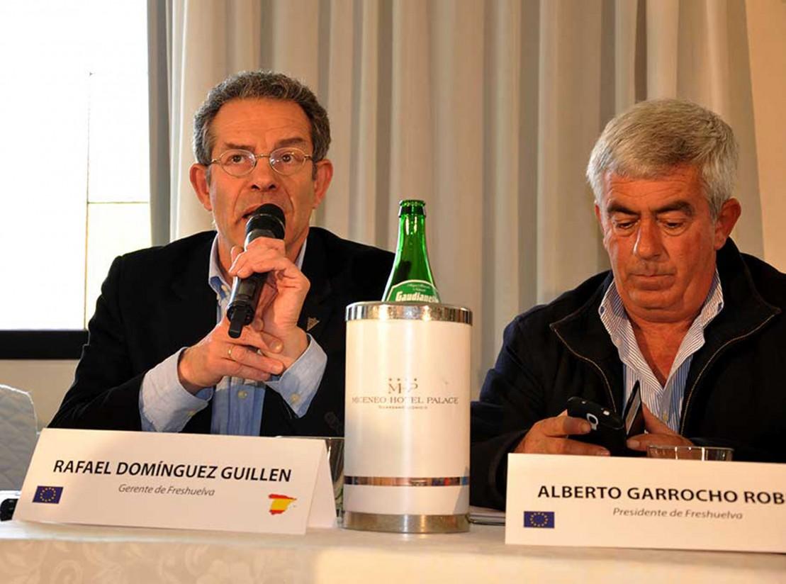 La disponibilidad de fitosanitarios preocupa a los productores de fresa de España, Francia e Italia