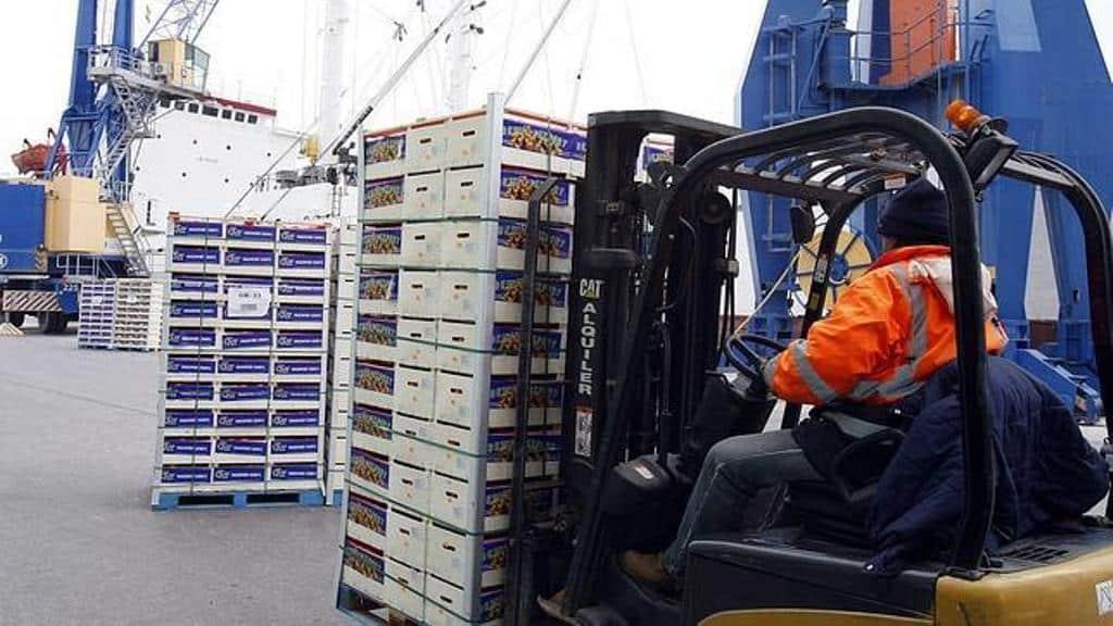 La exportación hortofrutícola facturó  un 40%  más en el pasado año  que en 2010