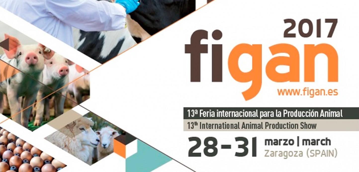 El certamen FIGAN 2017 estrena nuevo Comité Organizador