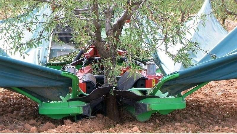 La necesaria mecanización en las plantaciones frutales de Aragón