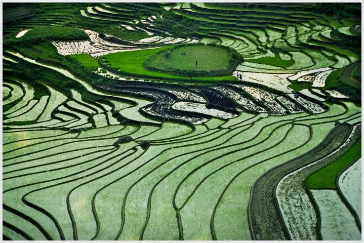 Fondos soberanos, un nuevo fenómeno en la economía agraria mundial. Por Jaime Lamo de Espinosa