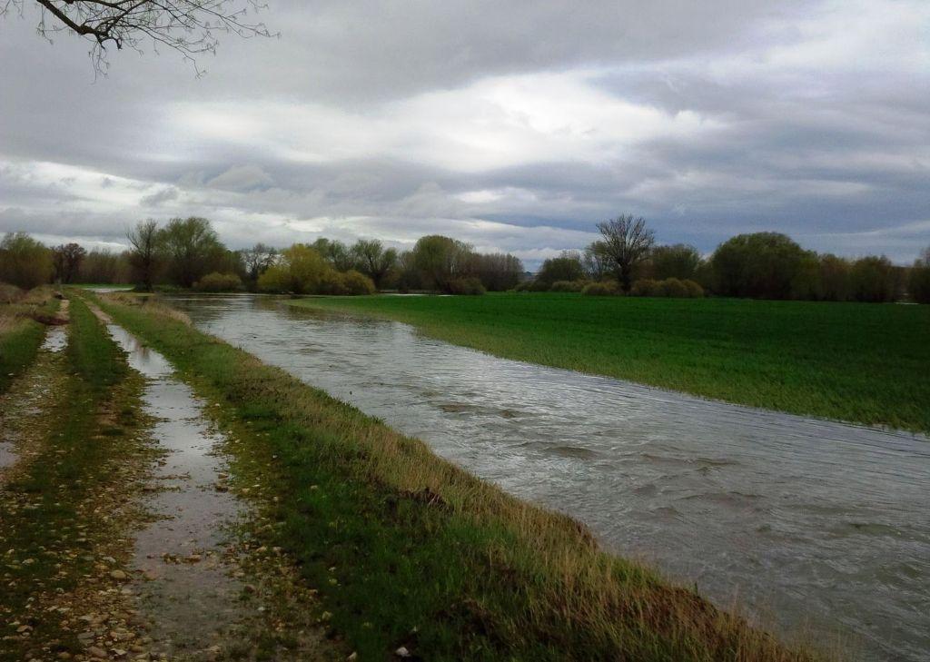 Pérdidas en miles de hectáreas de cultivos anegadas por el agua en Castilla y León