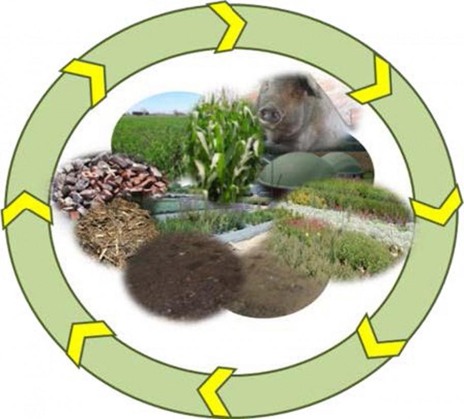 El IRTA organiza una Jornada dedicada a la economía circular aplicada al sector agrario