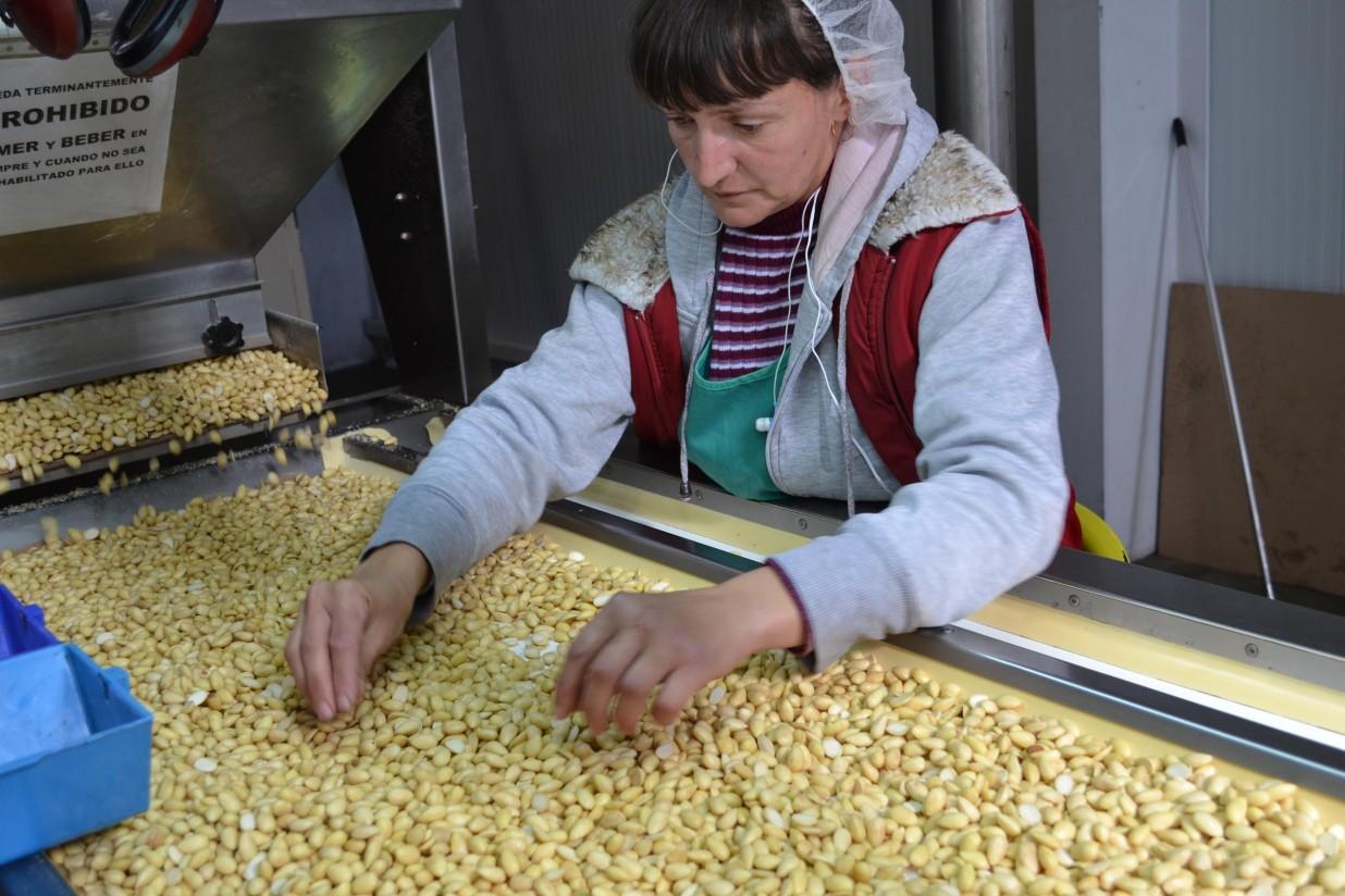 La producción de almendra disminuirá un 21% en Andalucía como consecuencia de la inusual meteorología