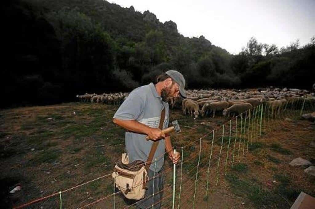 La Junta promueve financiación ventajosa para el sector primario y las pymes de Castilla y León