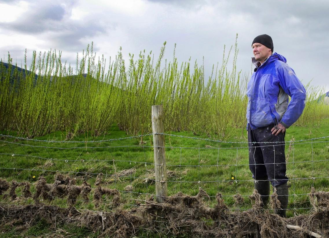 Los agricultores no pagarán IVA en las transmisiones de los derechos de pago único de la PAC
