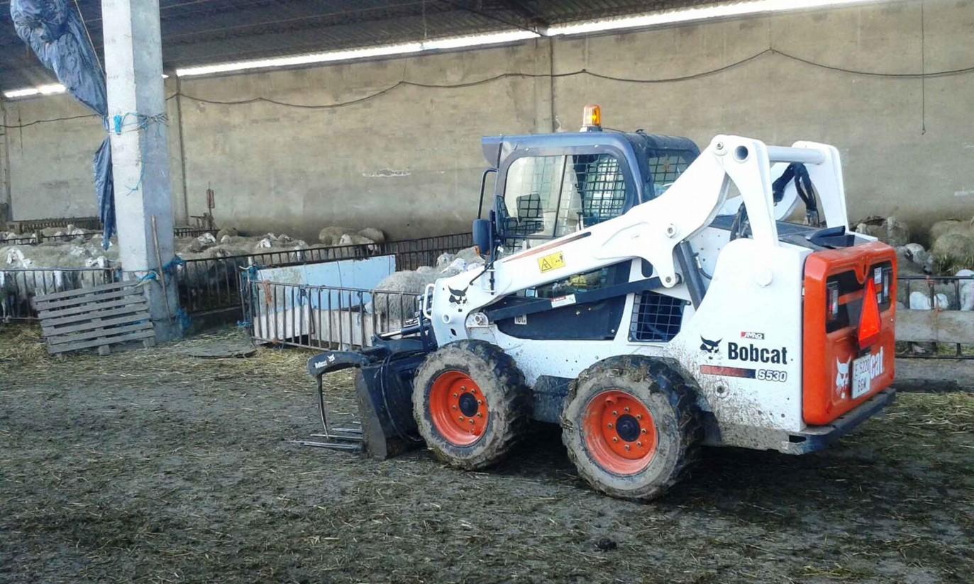 Rentabilizar una explotación ovina con la cargadora compacta Bobcat S530