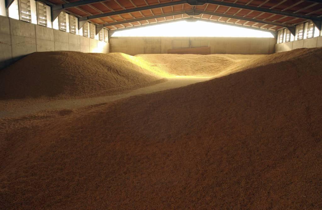 El índice de precios de los alimentos de la FAO señala su mayor aumento mensual en cuatro años