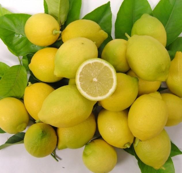 LimonesMurcia (FILEminimizer)