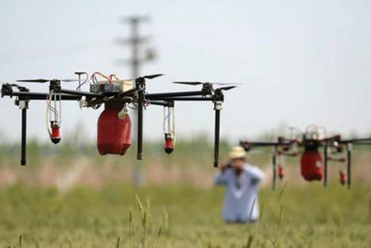 Drones: al servicio de una agricultura sostenible