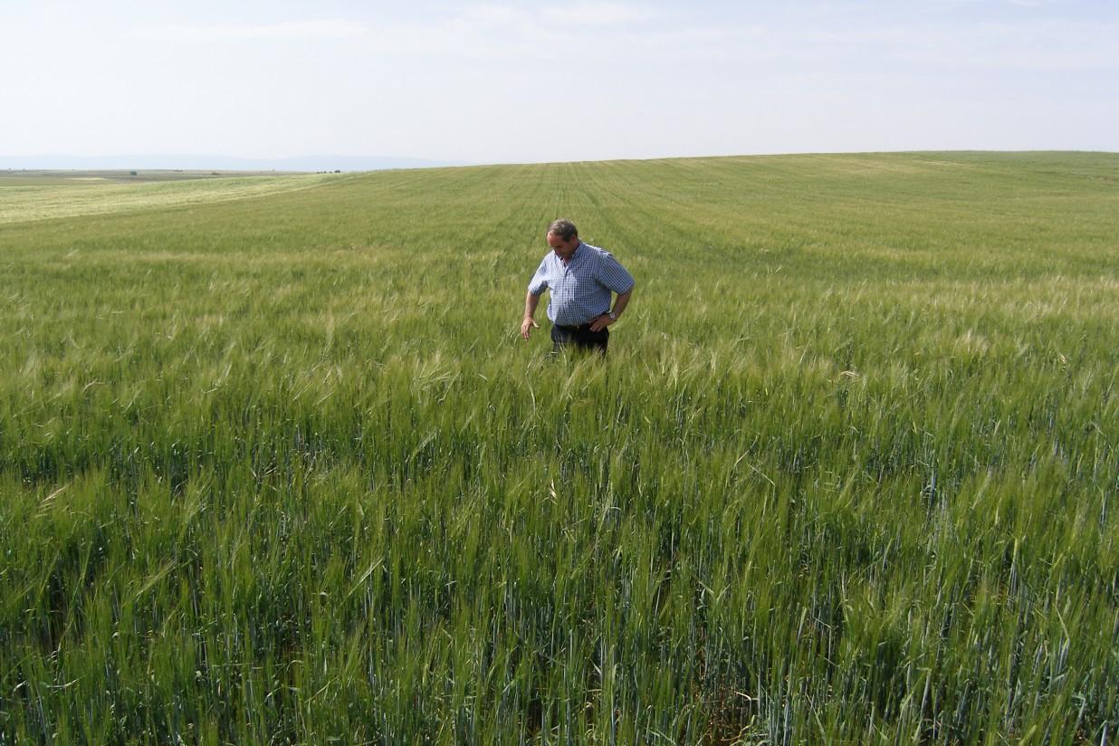 Aclaración de Unión de Uniones en relación a los cambios en la figura del agricultor activo