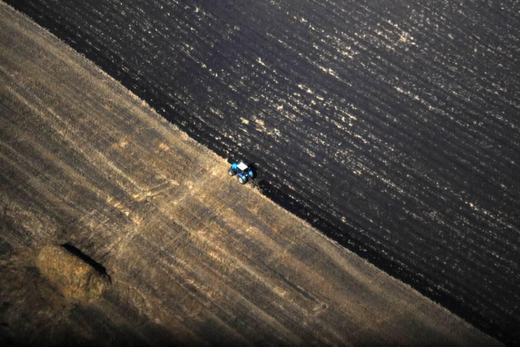 El Índice de precios mundiales de los alimentos de la FAO subió un 1,9% en agosto, pese a los cereales