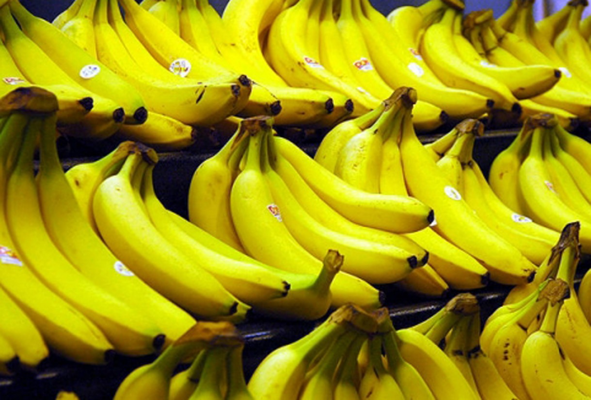 Los productores de plátano reclaman una mayor protección al Parlamento Europeo