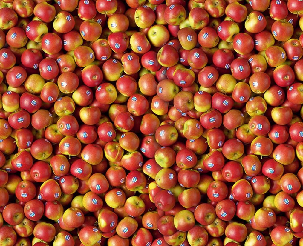 La comercialización y marketing de la manzana, a debate en Fruit Attraction