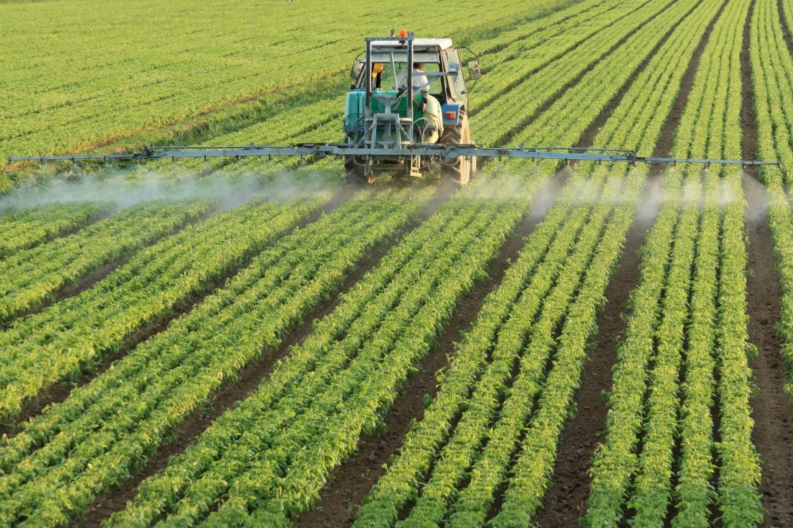Elecciones 10-N, España necesita nuevos y buenos programas rurales/agrarios. Por Jaime Lamo de Espinosa