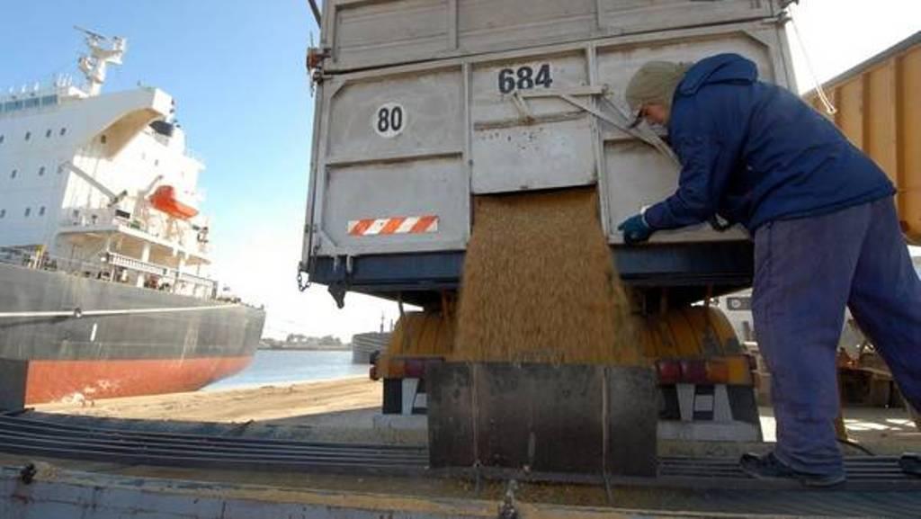 El CIC renueva los niveles récord de producción, consumo y stocks mundiales de cereales