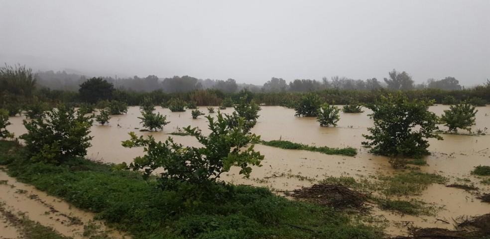 InundaMálagaASAJA