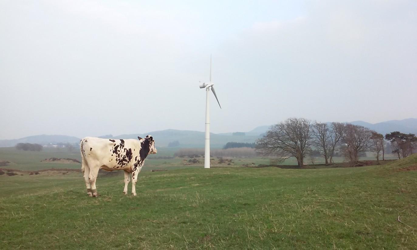 Plantas de biogás y energía eólica de Norvento para el sector agropecuario