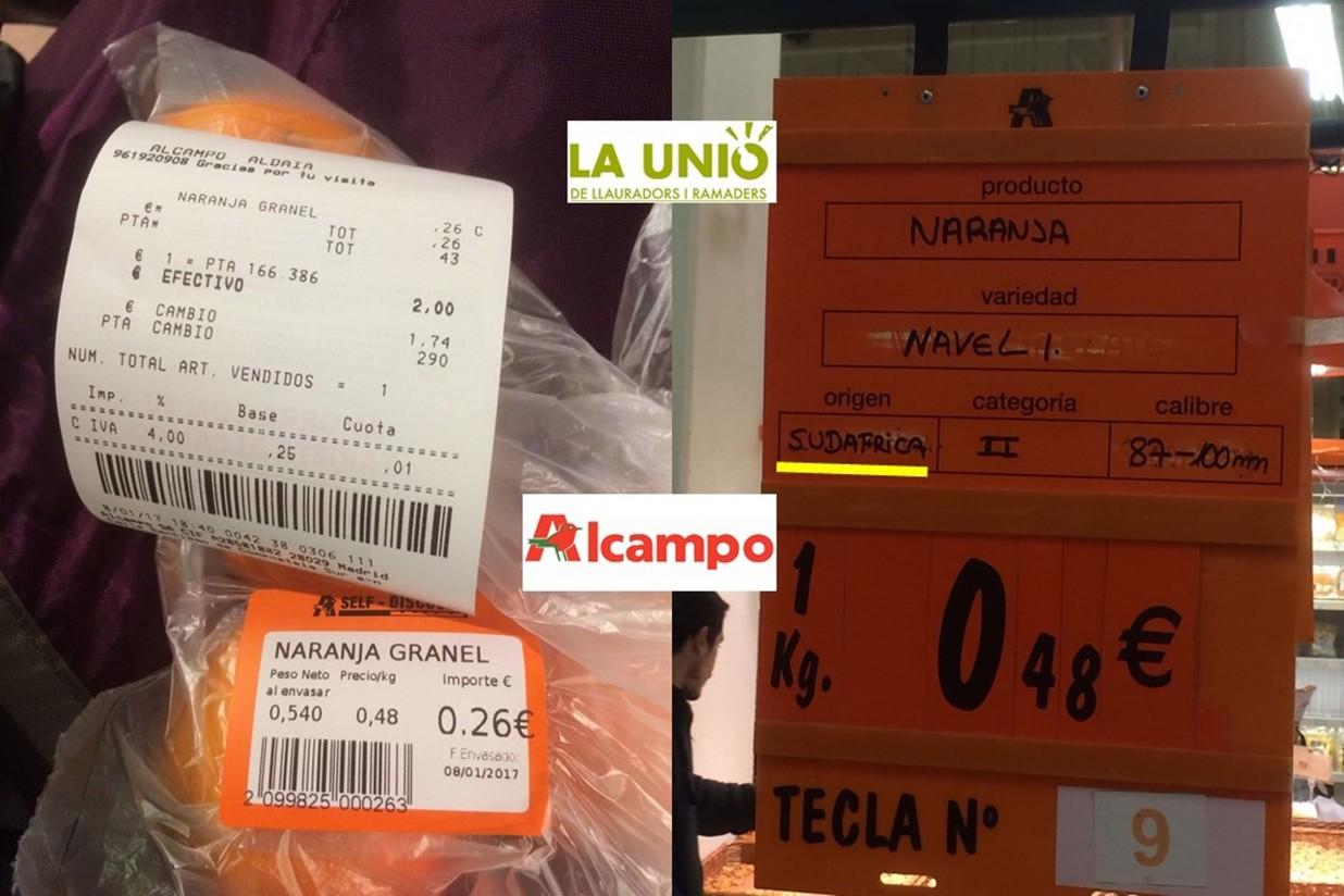 La Unió denuncia que aún se vendan naranjas sudafricanas en España