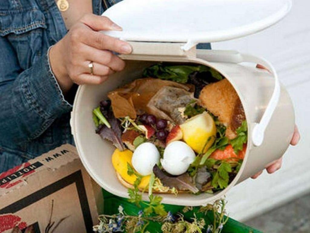 La UE puede y debería hacer más eficiente la lucha contra el despilfarro de alimentos