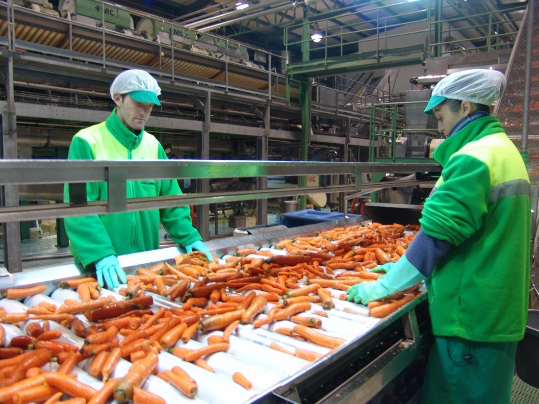 Indulleida e Ibérico de Comercialización, nuevas Entidades Asociativas Prioritarias