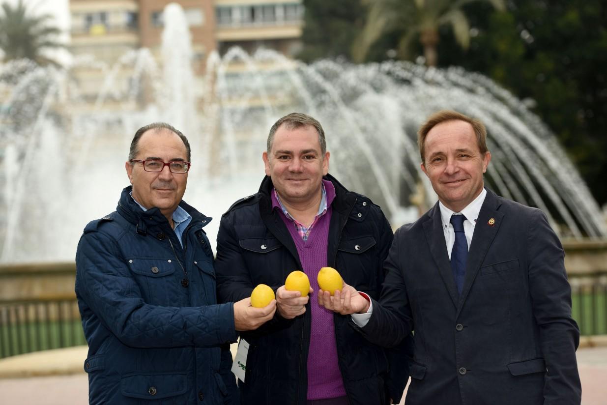 Ingenieros agrónomos e ingenieros técnicos agrícolas murcianos se unen a la promoción del limón